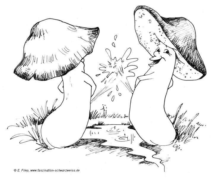 Pilz-Karikaturen Evelyn Filep